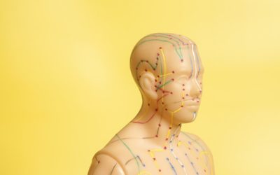 The 12 Meridians of Acupuncture